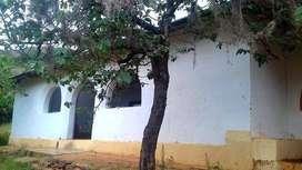 Vendo terreno remate Huánuco tomaykichua (16,000 m2 a 30.31 soles m2)