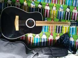Vendo guitarra tipo folk