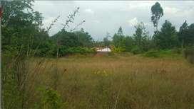 Tumbaco. Entre Tumbaco y Cumbaya Terreno de Venta Sector PACHOSALAS