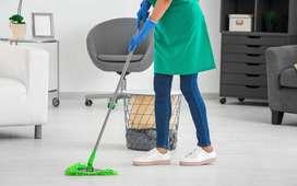 limpieza de casas y cuidado de niños y dama de compañia