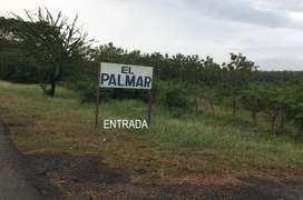 Finca El Palmar, se vende. En el Municipio de Dibulla – La Guajira