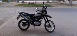 Lineal Zongshen 200cc