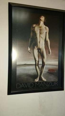 Vendo David Manzur