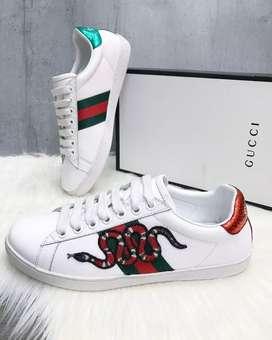 Gucci D.77