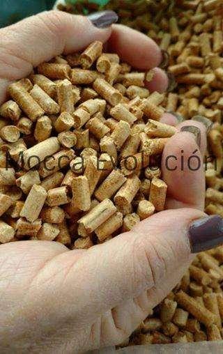 Bolsa de pellets de madera por 15 kg. 264 0