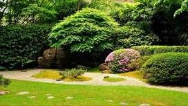 ¡Diseño, construcción y mantenimiento de jardines!