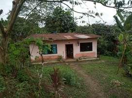 Terreno con casa   de 17×45 mts