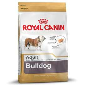 ROYAL CANIN BULLDOG entrega gratis Guayaquil