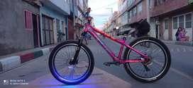 Bicicleta GW raven