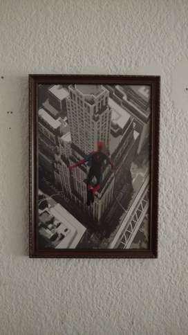 Cuadro Spiderman, Afiche Original IMAX, vidrio no reflectivo.