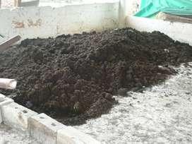 Gallinaza Compostada (bulto 50 kg)