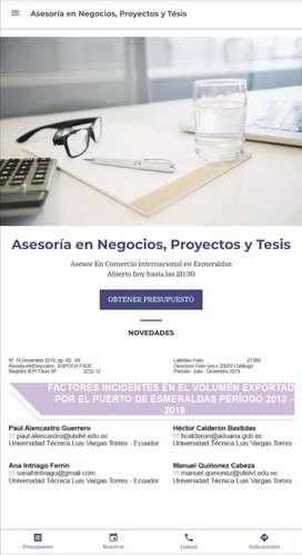 Asesoría en Negocios, Proyectos y Tésis