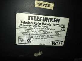 TV pantalla plana de 29'