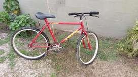 Bocicleta Mediana
