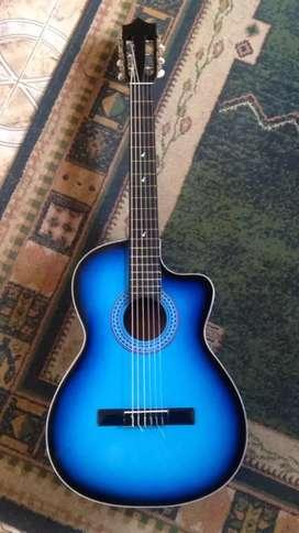 Venta de Guitarras naturales y de colores