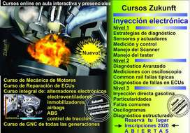 Curso de Inyeccion Electronica a Distancia (On Line) via Skype para Marzo 2021