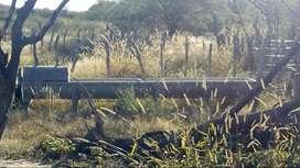 Campo El Algarrobal
