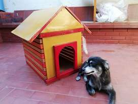 Casa madera para perro