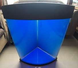 Espectacular Urna para acuario