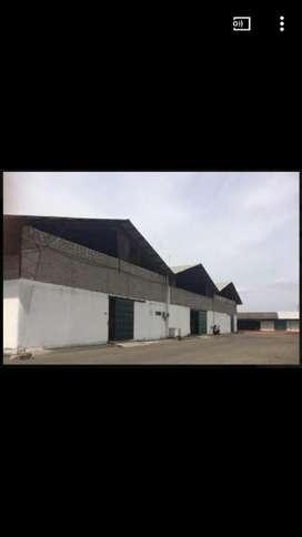 Bodega en alquiler en Duran Boliche 450 m2
