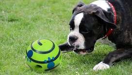 Pelota para mascotas con sonido y premio