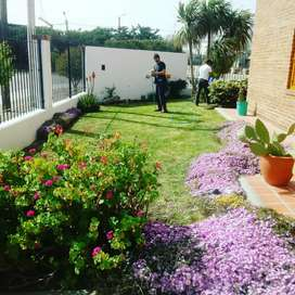 Hacemos trabajo de jardineria