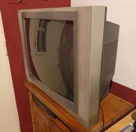TV TUBO COLOR 29 PULGADAS