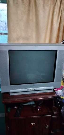 Vendo televisión Sony de 21 pulgadas