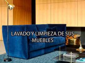Limpieza de Muebles y tapicería