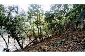 Terreno de Venta en Junín/Manabí