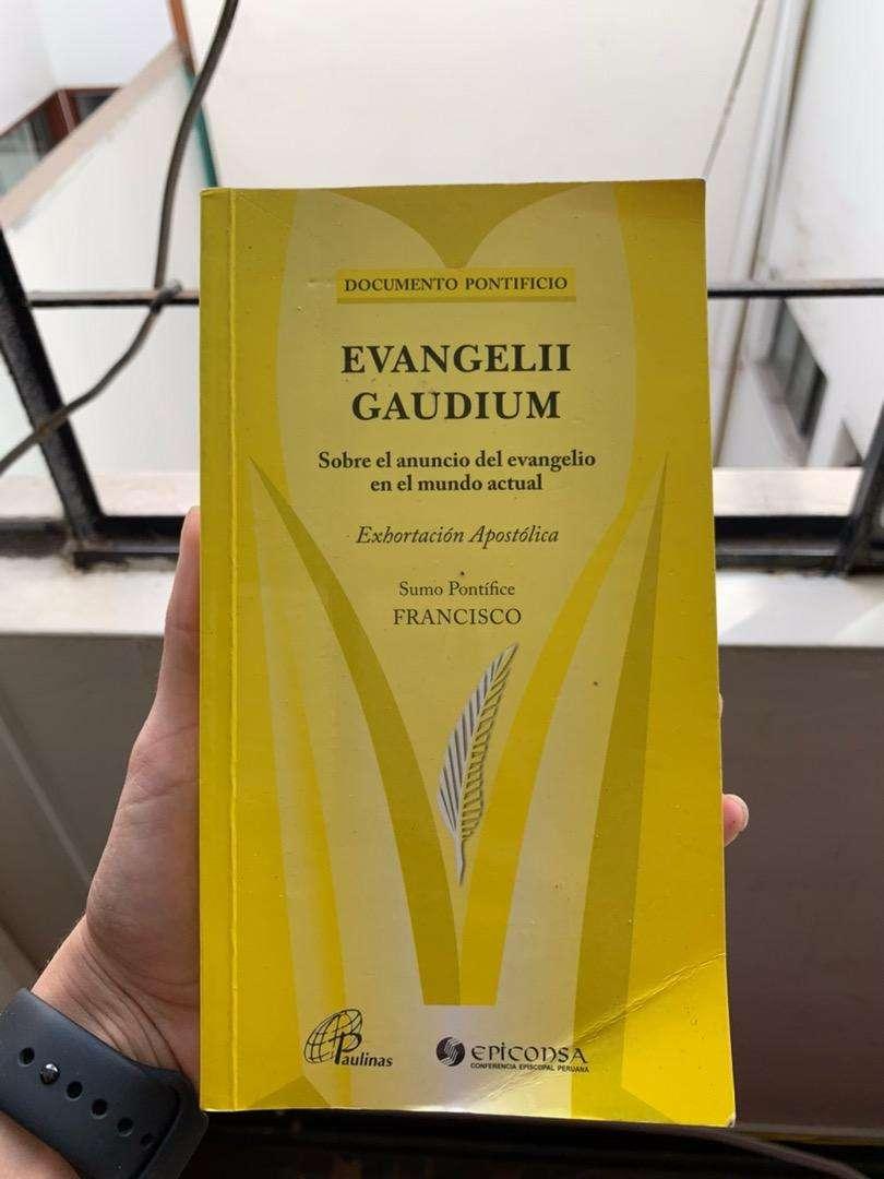 """VENDO LIBRO """" Evangelii Gaudium"""" 0"""