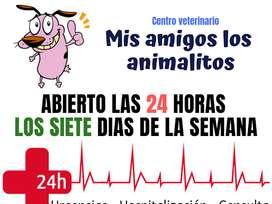 busco medicos ( a ) veterinario con o sin experiencia oferta de empleo