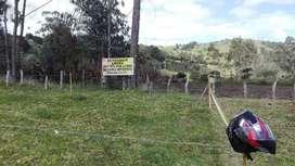 Se venden lotes urbanos en Murillo Tolima