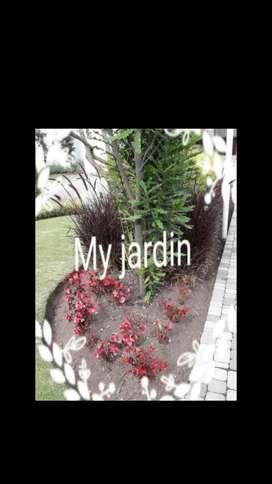 Jardíneria Y Mantenimiento