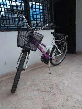 Bicicleta con canasta