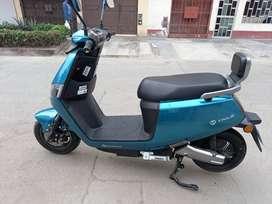 Moto Electrica Tailg Lion 2021
