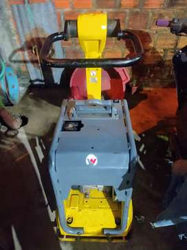 Alquilo máquina compactadora Wacker neuson