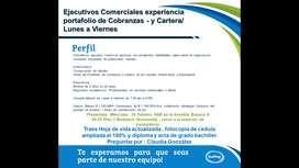 Ejecutivos Comerciales experiencia portafolio de Cobranzas - y Cartera/ Lunes a Viernes