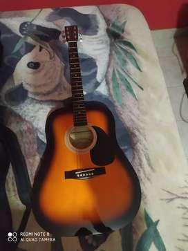 Guitarra stingrey acústica