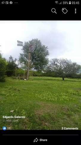 Alquilo campo de 100 hectáreas en Villa Ángela  chaco