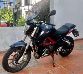 BENELII TNT 250
