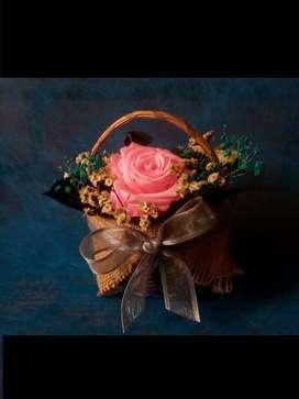 Flores de regalo/Rosas eternas/Decoraciones de oficina y hogar/Regalos personalizados