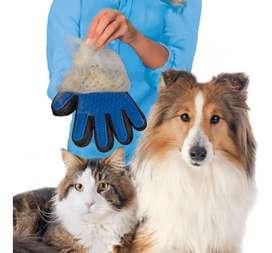 Guante Saca Pelos Masajeador Quita Pelos Mascota Gato Perros