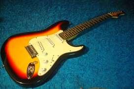Guitarra Electrica Stratocaster Texas Vendo O Permuto