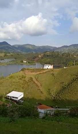 Rento hermoso aparta estudio nuevo ubicado entre el Peñol y Guatape