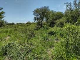 4 hectáreas termas de rio hondo