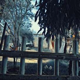 Se vende casa de campo sabaletas andalucia