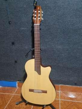 Guitarra profesional
