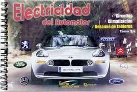ELECTRICIDAD del Automotor Gris