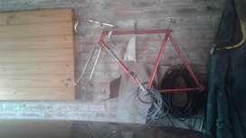 Cuadro Antiguo de Bici de Carrera